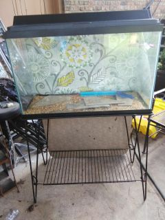 """30""""w x 12"""" DX 19 """" H Aquarium with lid, light, and vintage stand.plus many accessories and chemicals."""