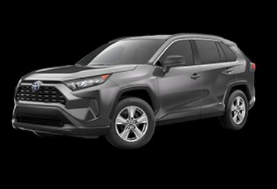 2019 Toyota RAV4 Hybrid LE (Magnetic Gray Metallic)