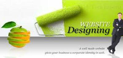 Website design company rohtak