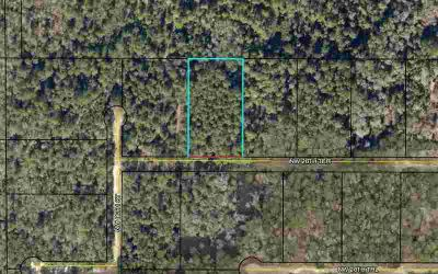 NW 26th Terrace Jennings, 2 ACRES IN NORTH FLORIDA!