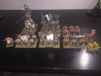 Warhammer Age of Sigmar - Gutbusters