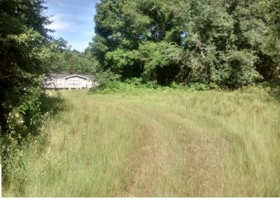 80 ACRES- GREAT INVESTMEN EXCELLENT LOCATION JUST 5 MINUTES TO EVERY CONVINIENCE, GAINESVILLE FL ARE