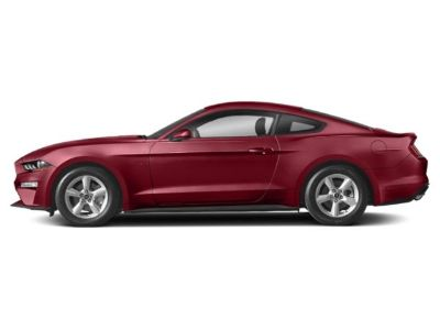 2019 Ford Mustang EcoBoost Fastback (Ruby Red Metallic Tinted Clearcoat)