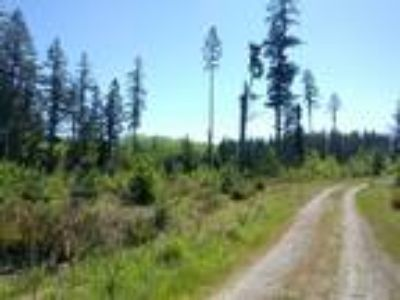 10 acres in Port Ludlow area near Teal Lake