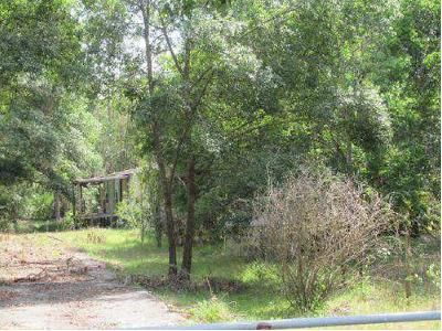 4 Bed 2 Bath Foreclosure Property in Lakeland, FL 33809 - Trailswood Path