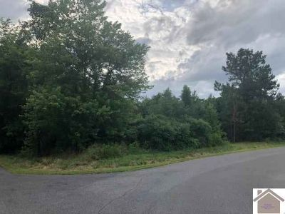 6420 Rolling Hills Dr Paducah, Affordable lot in the