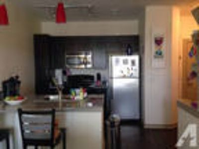 Modern 1 BR 1 BA less than a minute from campus