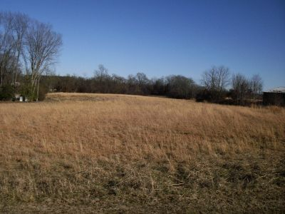 Well Maintained Home & 8 1/2 Acres - Paris, TN