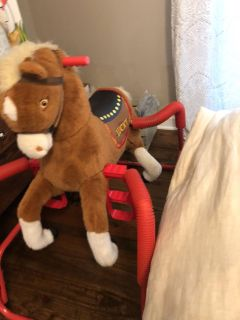 Riding Horse - large! Will need truck or suv to transport