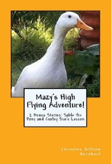 Mazy's High Flying Adventure-Signed Children's Book