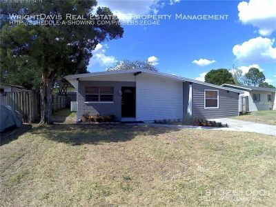 Beautiful 4 bedroom/ 2 bath home in South Tampa!