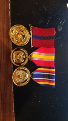 USMC gold anodized medals professionally mounted