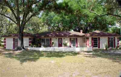 12317 Veronica Avenue TAMPA Three BR, Freshly PAINTED inside &