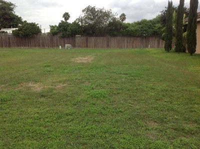 $45,000, Breathtakingly Beautiful Land in Pharr 0 Beds, 0 Baths