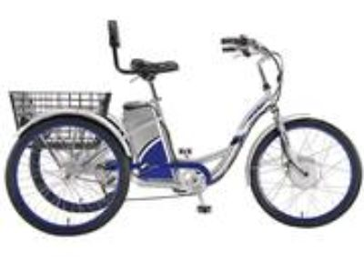 Currie EZIP Tri-Ride 3-Wheel Electric Bike