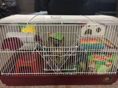 Prevue Hamster Cage with Ton of Extras
