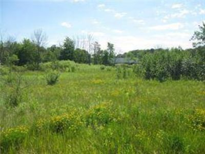 0 Wray Rd Plain Grove Township, Great building lot!