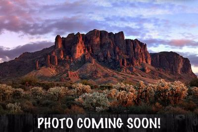 2018 Harley-Davidson 115th Anniversary CVO Limited Touring Motorcycles Apache Junction, AZ