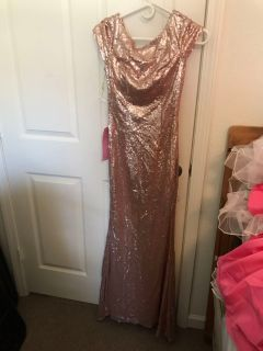 Baybydoll Online Sequined Beaded Formal Dress Size 4