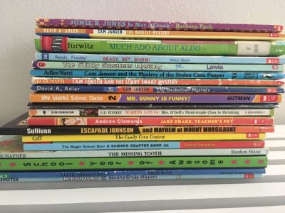 Lot of 19 elementary chapter books