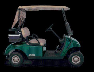 2014 E-Z-Go TXT Gas Golf Golf Carts Jesup, GA