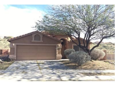 4 Bed 2 Bath Preforeclosure Property in Tucson, AZ 85739 - E Silky Mane Dr