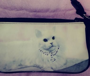 Kitty purse with jeweled cat collar