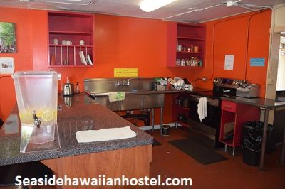 Deals On for Vacation in Seaside Hawaiian Hostel Waikiki Near Bus Stand