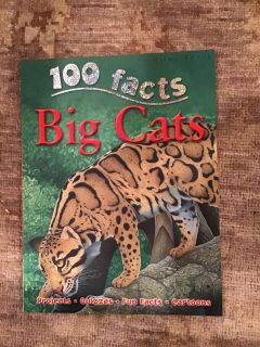 Like new 100 Facts - Big Cats Large Paperback - Projects, quizzes, fun facts, cartoons