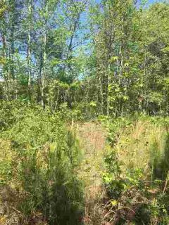 0 Walton Rd 2B Barnesville, Build your dream home on this