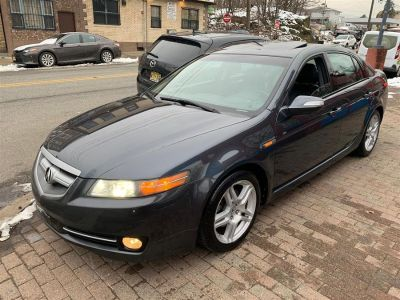 2007 Acura TL Base (Grey)