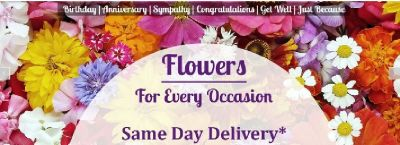 Book professional florist in St Thomas Ontario for flower delivery in different occasion