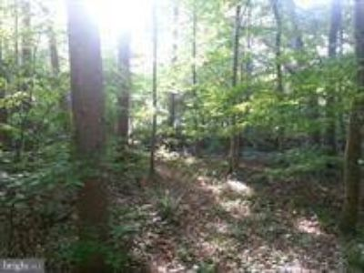 Spruce Run Rd Myersville, Beautiful secluded 12.14 acres.
