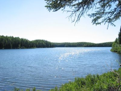 ***LOTS FOR SALE IN WILLOW, ALASKA***