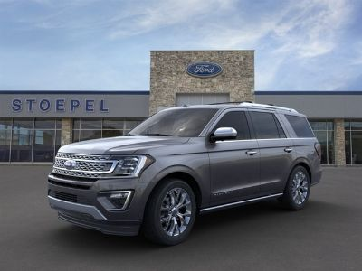 2019 Ford Expedition Platinum (Magnetic)