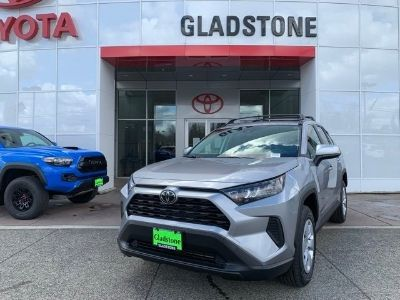 2019 Toyota RAV4 (Silver Sky Metallic)