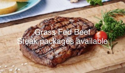 Grass fed Jersey /Angus