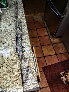 For Sale: benelli sbe2