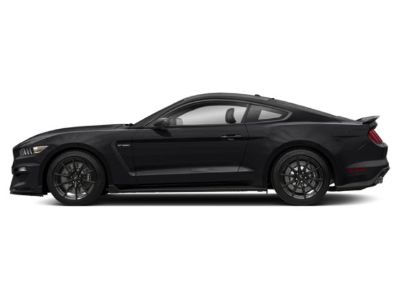 2019 Ford Mustang Shelby GT350R Fastback (Shadow Black)