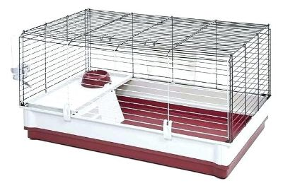 ISO Guinea pig cage