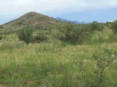 80ac E Grassy Valley Elfrida, Prime location to build you