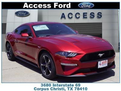2019 Ford Mustang ECOBOOST (RUBY RED METALLIC TINTED CLEARCOAT)