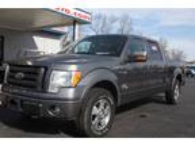 2009 Ford F-150 For Sale