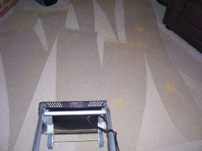 Dry Carpet Cleaning in Woodbridge For Quick & Effective Cleaning Results