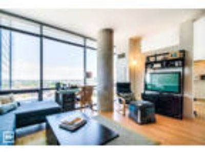 Lincoln Park - Roof Deck Pool, Laundry In Unit, Wood Flooring