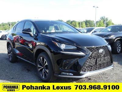 2020 Lexus NX (Obsidian Black)