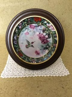 The Anna s Hummingbird Collectible Art Porcelain Plate