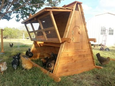 Beautiful 2-15 Chickens Coop Hen House -PORTABLE AND EASILY WINTERIZED- ON SALE for AUSTIN TEXAS area