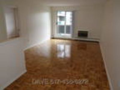 Luxury Apartment,Brookline Near BU Campus,Close T,Avail NOW-9/1