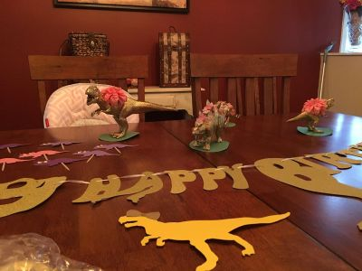 Girl Dinosaur Party Decorations